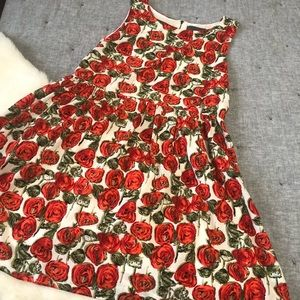 Sunday in Brooklyn Anthro red rose  floral dress L
